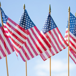 For the Nation - image of a line of U.S. flags